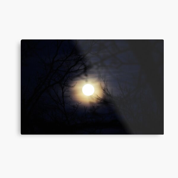 Blue skies at night Metal Print