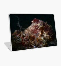 Blue Ringed Octopus Laptop Skin