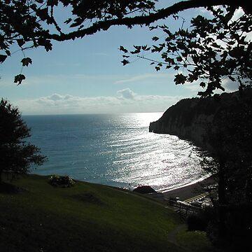 Cliffs over Beer in Devon. by CjbPhotography