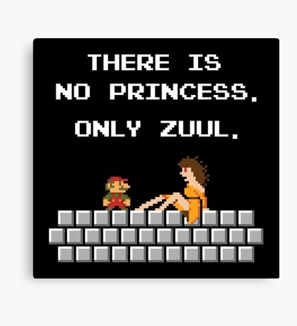 There is No Princess Canvas Print