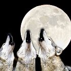 Wolves Howling at the Beaver Moon by AspenWillow