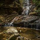 Empress Falls by Werner Padarin