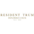 President Trump. Deploribus (deplorables) unum by Val Goretsky