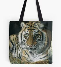 Year of the tiger by Sam Norbury & Rodeorose Tote Bag
