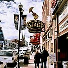 """DOWNTOWN NASHVILLE, TENNESSEE, BEFORE THE FLOOD""... prints and products by Bob Hall©"