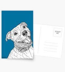 Staffordshire Bull Terrier Portrait Postcards