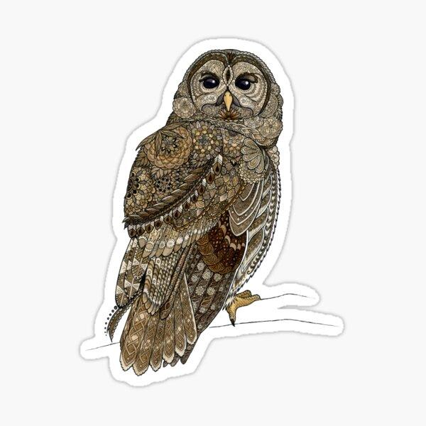 Barred Owl Tangle Sticker