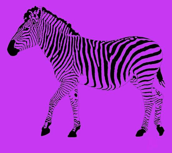 Zebra 1B by onejyoo