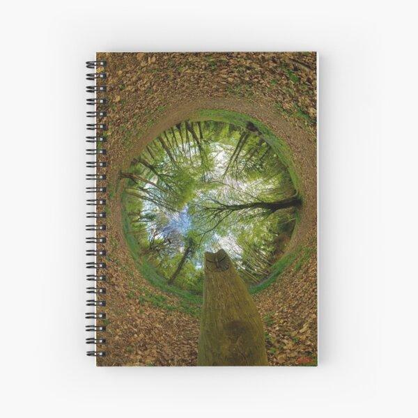 Butterfly Sculpture in Prehen Woods, Derry (Sky-in) Spiral Notebook