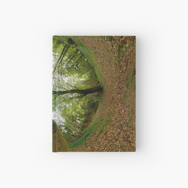 Butterfly Sculpture in Prehen Woods, Derry (Sky-in) Hardcover Journal