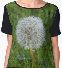 Common Dandelion Chiffon Top