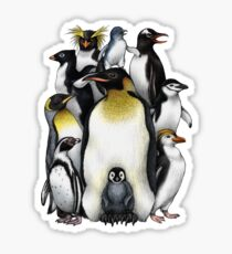 Penguin Obsession Sticker