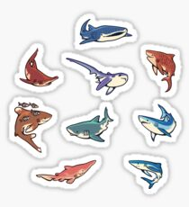 Sharks in the light blue Sticker