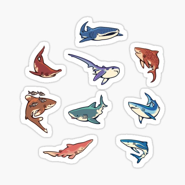 Haie im hellblauen Sticker