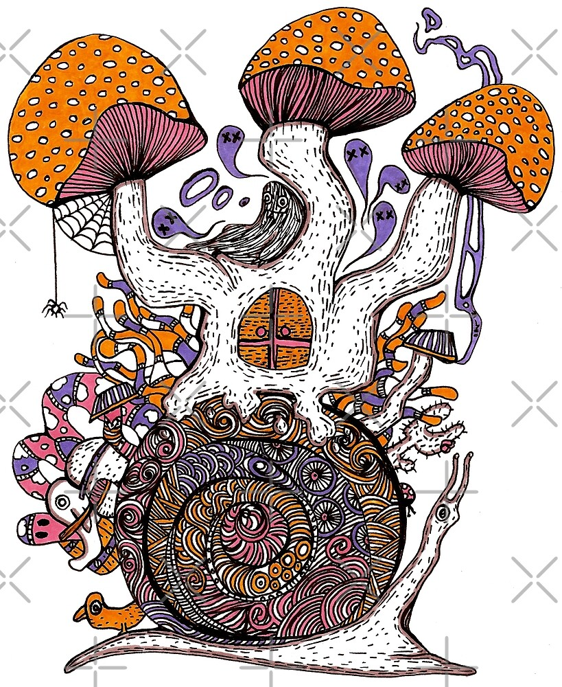 The Snail House by Octavio Velazquez