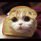 Breadcat by WafflesCat