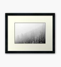 White Forest Wanderlust Framed Print