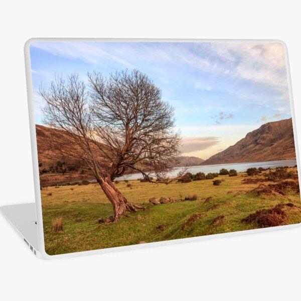 Lone Tree at Lough Nafooey Ireland. Laptop Skin