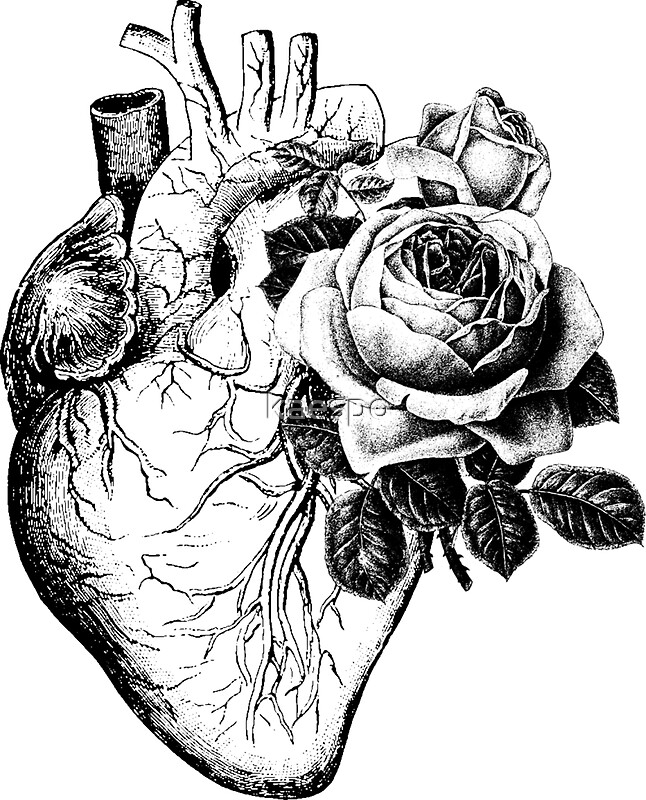 """floral anatomical heart"""" stickers by kaespo 