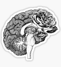 Floral Anatomical Brain Sticker