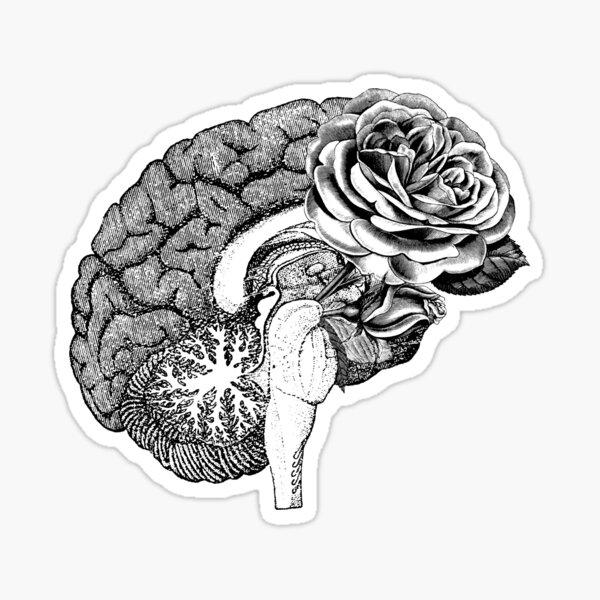 Floral Anatomical Brain Sticker