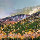 Mountain In the Mist by Nancy Richard