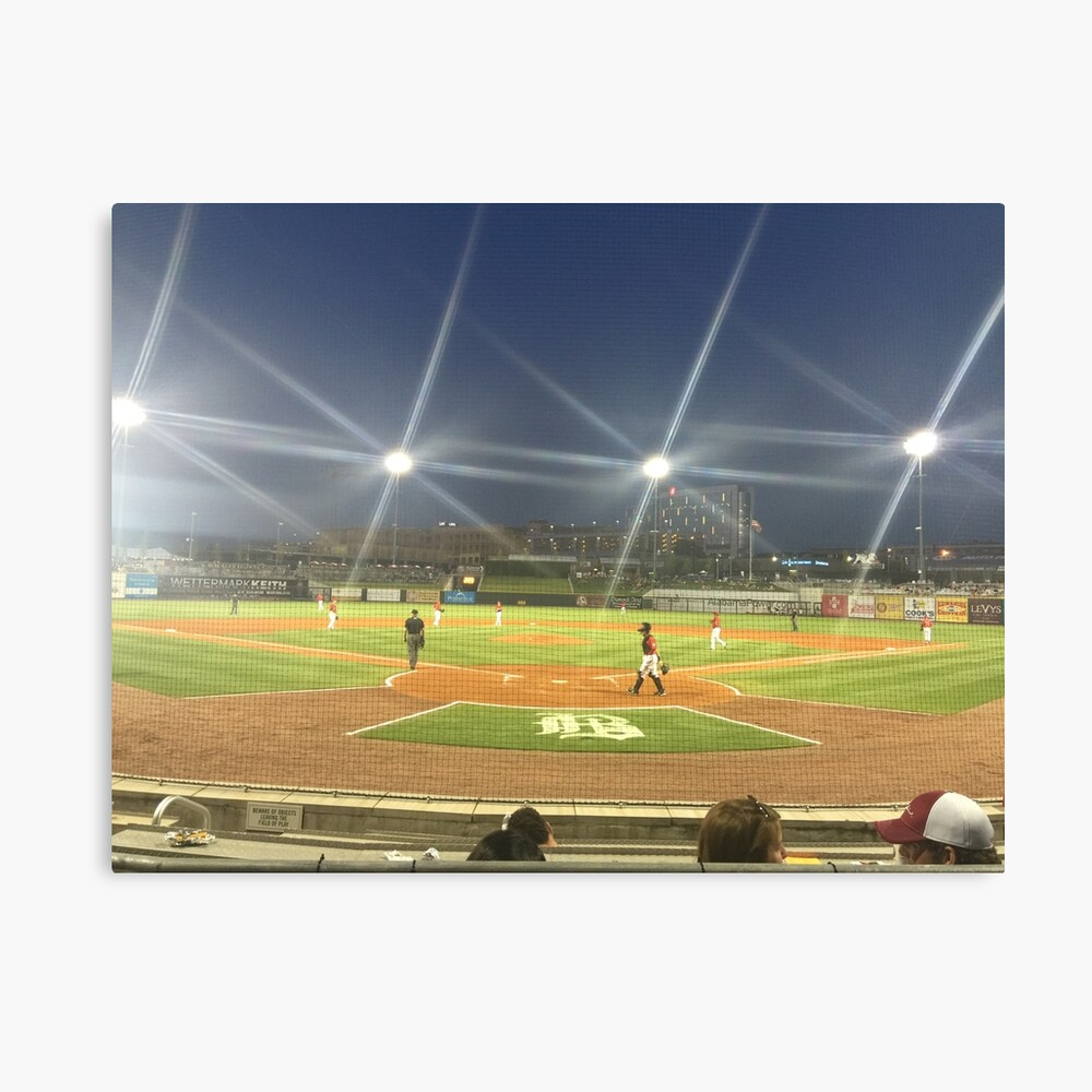 Take Me Out to the Ballgame Collection  Canvas Print