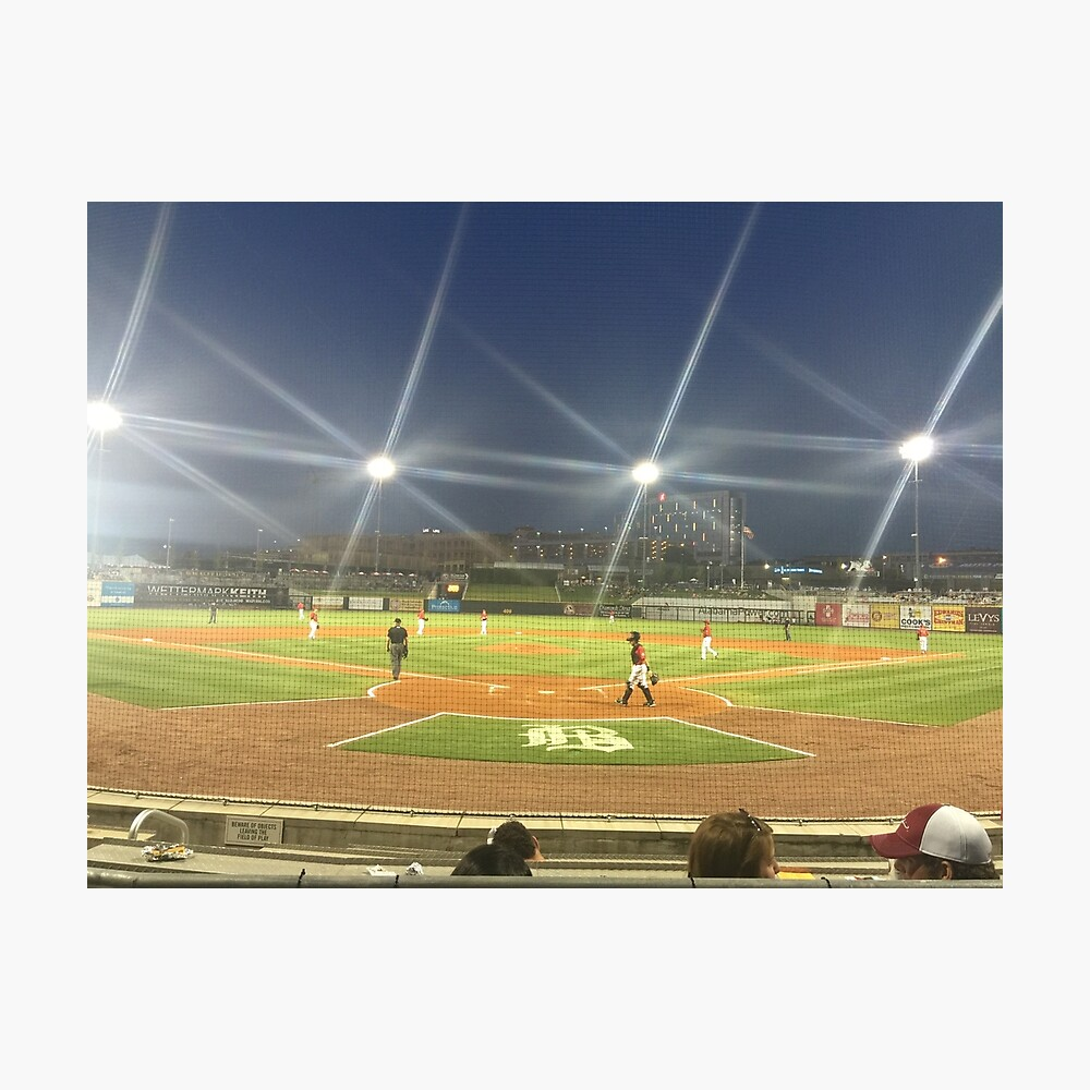 Take Me Out to the Ballgame Collection  Photographic Print