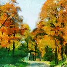 An Autumn Drive by shutterbug2010