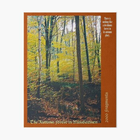 2000 FRAGMENTS ~ The Autumn Forest in Nussbaumen Art Board Print