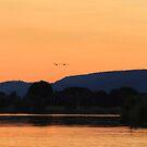 Orange sunset by Greta van der Rol