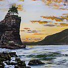 Sea Stars - Michael Dyer by Rachelle Dyer