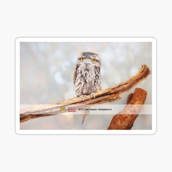 E.T. Wide Awake, Native Animal Rescue Sticker