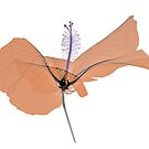 Copper and purple Hibiscus flower by Paul CESSFORD
