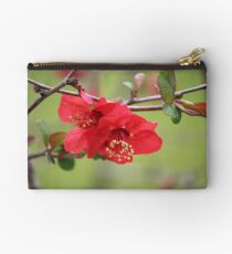 Japanese Quince Studio Pouch