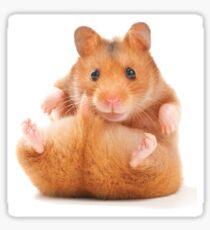Cheeky Hamster Sticker