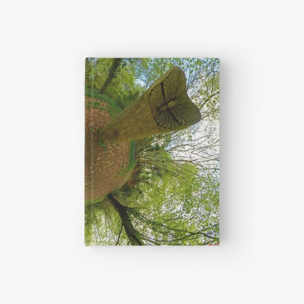 Butterfly Sculpture in Prehen Woods, Derry Hardcover Journal