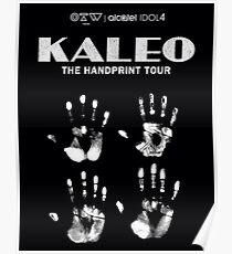 kaleo tour 2016 sheilamajid sm four 4 Poster