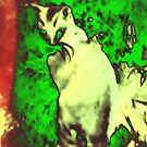 vincenzo magnificiento (el pussycatto) dans la  jardin des fauvistes by OTOFURU