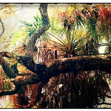 Hues of Branches Artistic Photograph One of a Kind Unique Decor by twobrokesistas