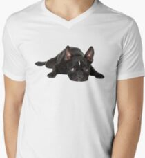 French bulldog Men's V-Neck T-Shirt
