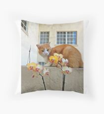 Cat Behind the Flowers Throw Pillow