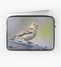 Sparrow on fence Laptop Sleeve