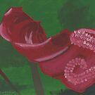 Anthurium by featheredzebra