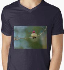 TINY FLUFFYBALL Mens V-Neck T-Shirt