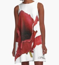 Poppy By Dianna Derhak A-Line Dress