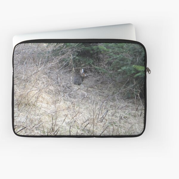 Snowshoe rabbit  Laptop Sleeve