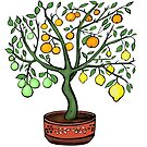 Citrus Tree with 4 fruits by SurlyAmy