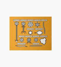 Bacteriophage families Art Board