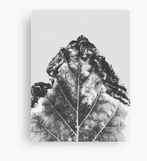 leaf texture background in black and white Canvas Print